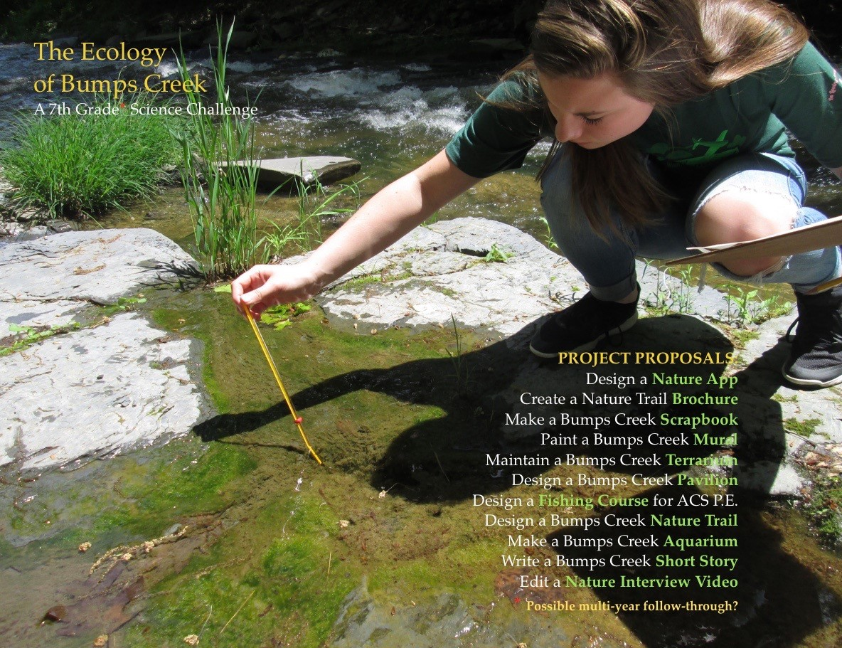 ACSLIB Poster: Student gathering water sample from Bumps Creek.
