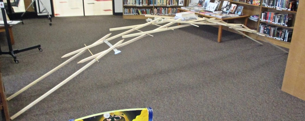 Larry, Robert, and Rafferty built a friction/gravity bridge in the ACSLIB.