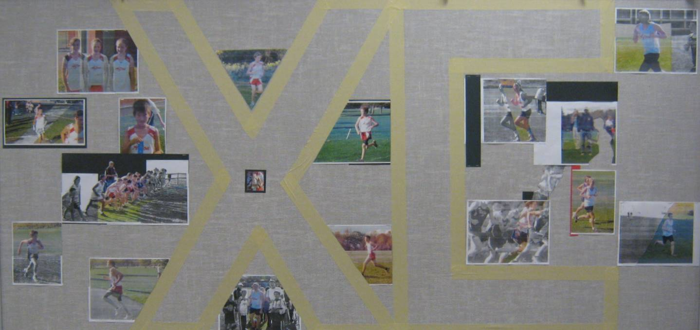 Library display for XC team.